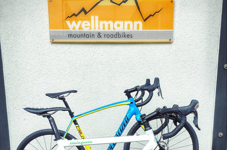Erfahrungsbericht – Wellmannbikes
